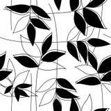 Флористическая черно-белая безшовная картина Стоковая Фотография