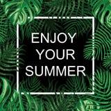 Флористическая экзотическая предпосылка Насладитесь вашим летом Стоковое Фото