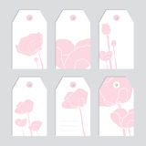 флористические бирки комплекта прикройте ярлыки Розовые цветки Стоковое Изображение RF
