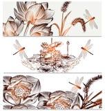Флористические предпосылки установленные в элегантный стиль Стоковое Изображение RF