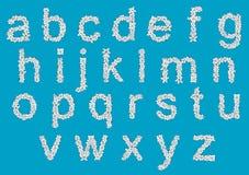 Флористические установленные строчные буквы алфавита Стоковое фото RF