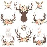 Флористические элементы Antlers бесплатная иллюстрация