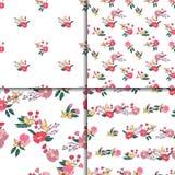Флористический безшовный винтажный комплект картины Wildflowers Стоковое Фото