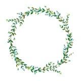 Флористический венок Гирлянда евкалипта разветвляет Рамка травы иллюстрация штока