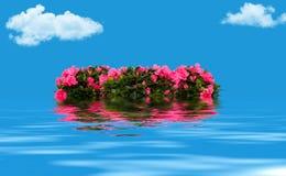Флористический венок плавая на воду Стоковая Фотография