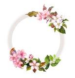 Флористический венок - цветки и милая птица Рамка акварели Стоковое Изображение