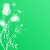 Флористический дизайн Стоковое Изображение