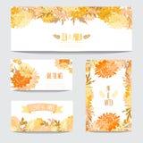 Флористический комплект карточек Стоковые Фото