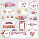 Флористический комплект карточек Стоковое Фото