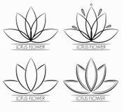 Флористический конспект логотипа цветка лотоса Стоковая Фотография RF