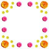 Флористический красочный комплект предпосылки картины Стоковые Фото