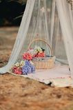 Флористический натюрморт стоковое фото rf