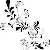флористический орнамент черно-белый Стоковое Изображение RF