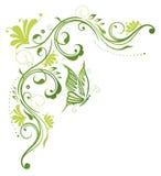 Флористический усик, цветки, весна Стоковое фото RF