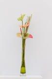 Флористическое искусство Стоковая Фотография RF