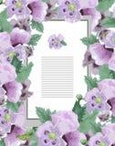 флористическое карточки шикарное Стоковое Фото