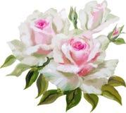 флористическое предпосылки декоративное Стоковое Изображение RF