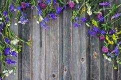 флористическое предпосылки цветастое Цветки поля на w выдержанном годом сбора винограда Стоковое Изображение RF