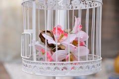 Флористическое украшение в клетке Стоковое фото RF