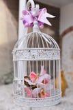Флористическое украшение в клетке Стоковое Изображение RF
