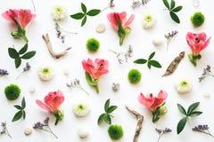 Флористическое украшение на белой предпосылке Стоковое Фото