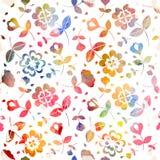 Флористическое pattern_1 Стоковое Фото