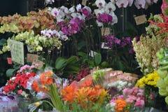 Флорист Гонконг Стоковое Фото