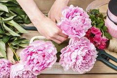 Флорист на работе: женщина делая флористическое украшение розовых пионов Стоковые Фотографии RF
