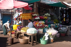 Флорист на рынке Стоковые Фотографии RF