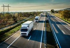 хайвей каравана перевозит белизну на грузовиках Стоковое Изображение