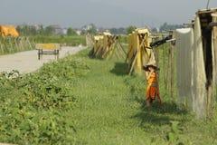 Ханой, Вьетнам: вермишель аррорута специальные въетнамские лапши сушится на бамбуковых загородках идя вперед Стоковые Изображения RF