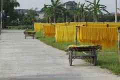 Ханой, Вьетнам: вермишель аррорута специальные въетнамские лапши сушится на бамбуковых загородках идя вперед стоковая фотография