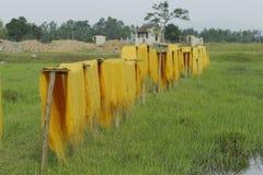 Ханой, Вьетнам: вермишель аррорута специальные въетнамские лапши сушится на бамбуковых загородках идя вперед Стоковые Изображения