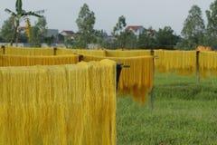 Ханой, Вьетнам: вермишель аррорута специальные въетнамские лапши сушится на бамбуковых загородках идя вперед Стоковое Изображение