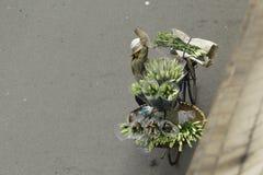 Ханой, Вьетнам - местный уличный торговец в центре города Ханоя, Вьетнама стоковая фотография rf