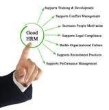Характеристики хорошего HRM стоковое фото