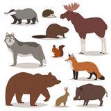 Характеры шаржа вектора животных леса animalistic носят лису и одичалые волка или хряк в комплекте иллюстрации полесья лося иллюстрация штока