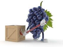 Характер виноградин с клетью иллюстрация штока