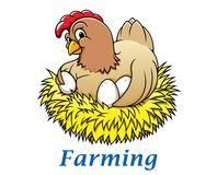 Характер курицы шаржа Стоковое Изображение