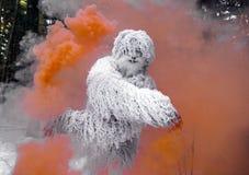 Характер сказки йети в фото фантазии леса зимы внешнем Стоковые Изображения