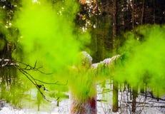 Характер сказки йети в фото фантазии леса зимы внешнем Стоковое Изображение RF