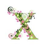 характер x Стоковое фото RF