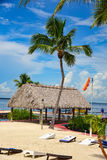 Хата и пальмы Tiki на пляже стоковые изображения rf