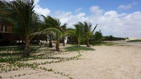 Хата пляжа на острове соли Стоковые Фото