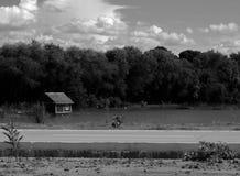 Хата Стоковая Фотография RF