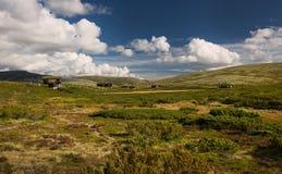Хаты в ландшафте Норвегии Стоковые Фотографии RF