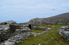 Хаты улья сухого камня на полуострове Dingle Стоковое Фото