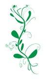 Хворостина с иллюстрацией вектора листьев абстрактной Стоковое Изображение RF