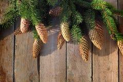 Хворостины и конусы рождества елевые Стоковые Изображения RF