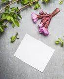 Хворостины и цветки весны с пустой карточкой белой бумаги Стоковые Фотографии RF